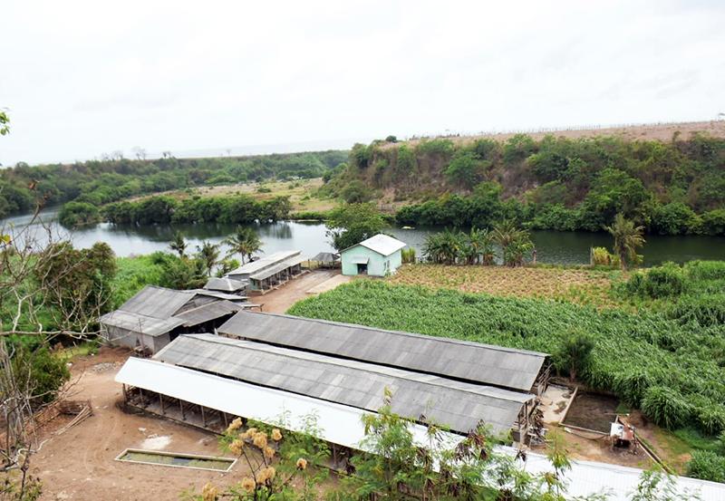 Food Estate Complex Labangka