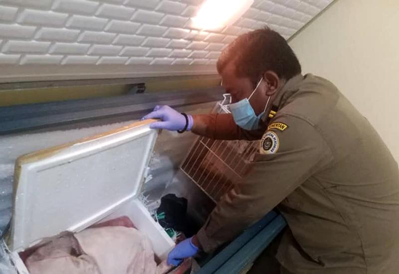 Penyelundupan Daging Babi dari Sumbawa Ke Lombok Berhasil Digagalkan
