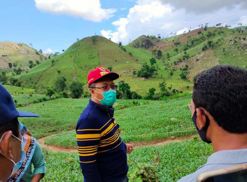Hutan di Dompu Gundul, Gubernur NTB Ancam Pembeli Jagung