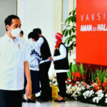 Jokowi Hebat 3