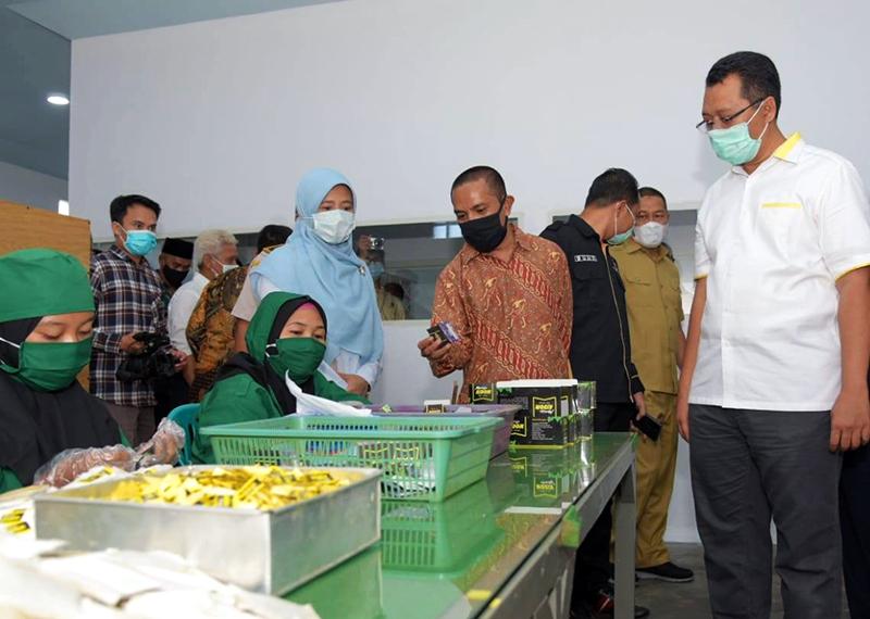 NTB Miliki Pabrik Pengolahan Kelor Untuk Aneka Produk Kesehatan