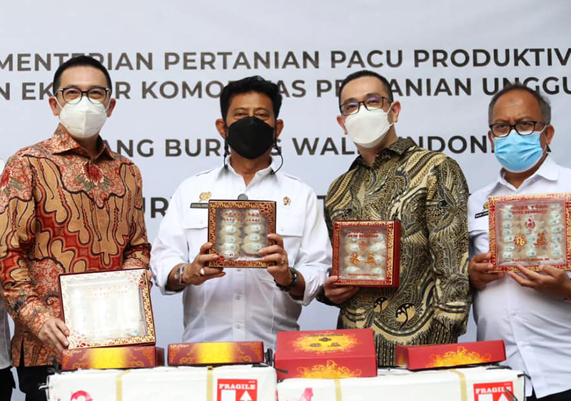 Sarang Burung Walet Jadi Produk Andalan Ekspor Indonesia