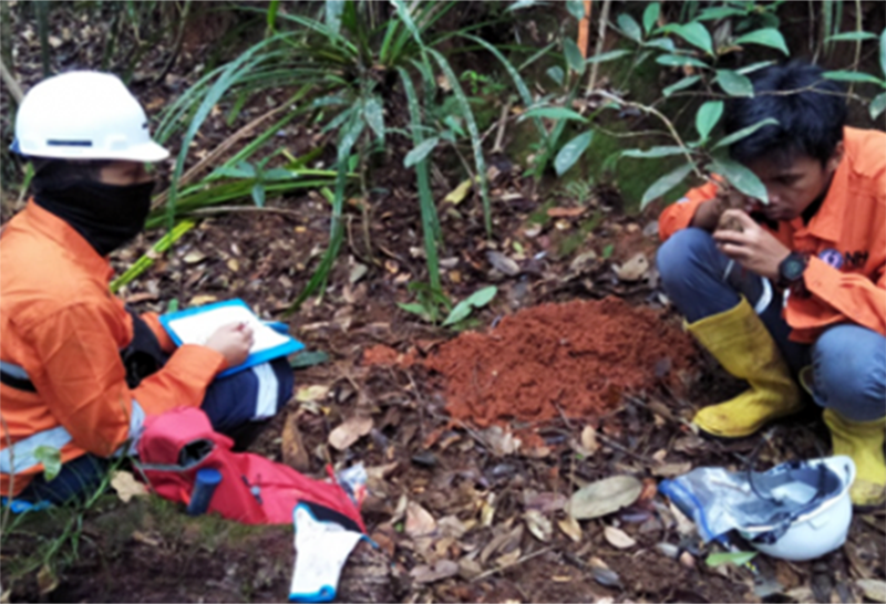 Eksplorasi Mineral di Sumbawa Barat