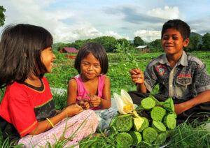 Mayoritas Penduduk Sumbawa Barat Generasi Z Alias Generasi Micin - Penduduk Sumbawa Barat