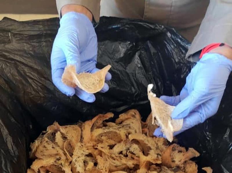 Sarang Burung Walet Asal Sumbawa Barat Diminati Pasar Domestik -Sarang Burung Walet Sumbawa Barat