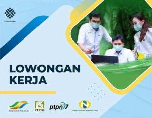 Lowongan Kerja PT Perkebunan Nusantara Group