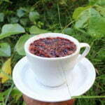 Kaya Antioksidan, Sarang Semut Papua Ampuh Obati Penyakit